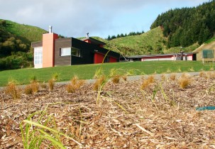 waikanae rural retreat-1